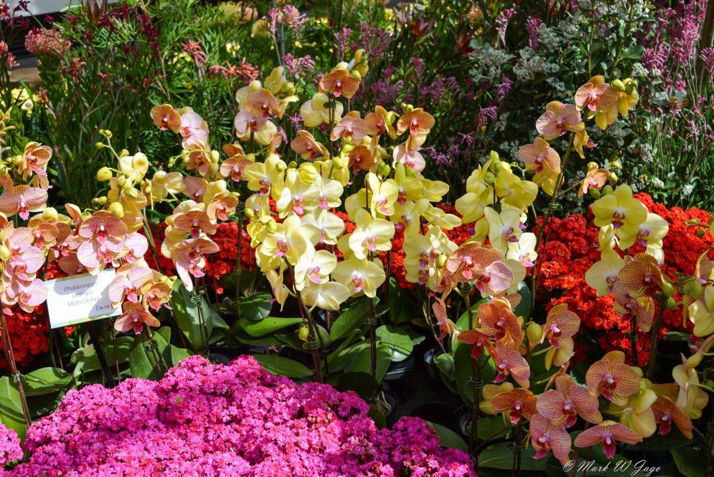 Marks post Sydney botanic gardens
